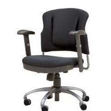 Lumbar Flex Chair
