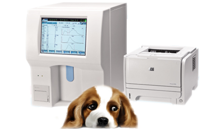 Vet Fully Auto Hematology Analyzer